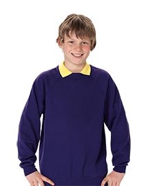 School Uniforms Embroidered Sweatshirts - school uniform supplier
